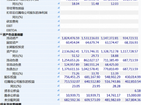 复盘金立死亡之谜 刘立荣挪用公款数目可能在60亿左右