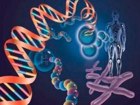 基因编辑来了 请问什么是基因编辑技术?