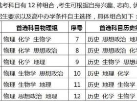 2019湖南省高考改革方案公布:不分文理科(附图表)