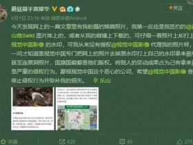 视觉中国复出后再惹争议:裁掉摄影师图片水印牟利