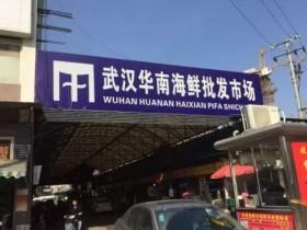 重回武汉肺炎起点:卖野味的华南市场老板是谁?