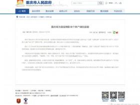 重庆将为受疫情影响个体户调低定额