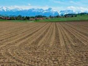 黄奇帆:新一轮土地市场化改革 意义伟大